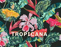 Tropical Exotic Hawaiian Patterns