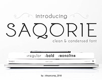 Free Font, Font Clean, Bold & Monoline Typeface
