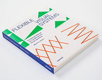 Flexible Visual Systems