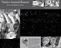 Native Animal Rescue newsletter (Summer 2016)