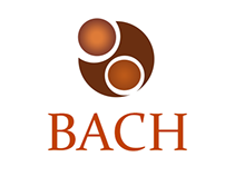BACH Accountants Branding