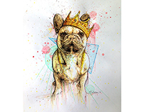Commission Work - Biggie the Frenchie