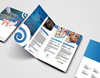 Quimtia's brochure