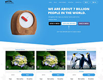 Crowd Funding Website Development
