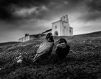 """Gothic Refuge"""