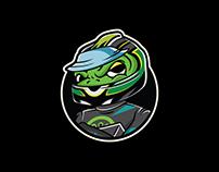 Car Racing Frog