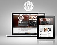 Web Design Projects (Freelance)