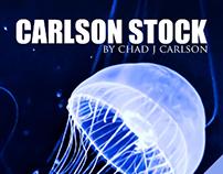 CarlsonStock by Chad J Carlson -- www.carlsonstock.com