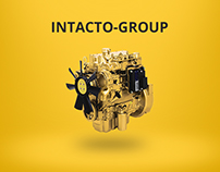 Landing Page for Intacto