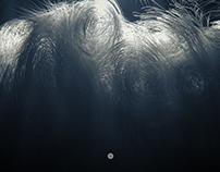 X-Particles experiment #01-04