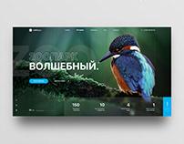 Web-Design concept for Design-Battle.