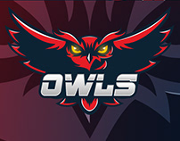 Owls Team - Mascot Logo