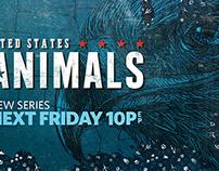 NatGeo Wild | United States of Animals
