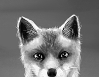 FOX / BW