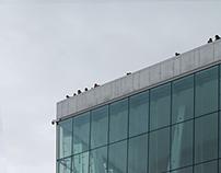 Photography of Oslo Opera House