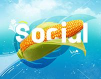 (Multi Brands) SOCIAL MEDIA