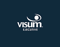 Visum Executive 2013
