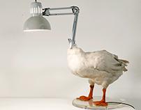 Duck Lamp (White)