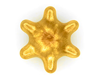 Cymatic Christmas Star