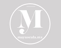 MAYUSCULA ARQUITECTOS Y DECORACIÓN