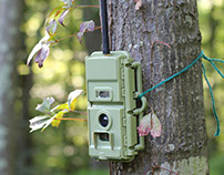 Panthera V5 Camera Trap