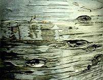 SKIN Original Charcoal Drawing of a Birch Bark