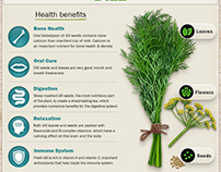 Herbs infographic