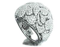 Dribble ring