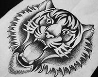 Tiger goes RAWR!!  1of365