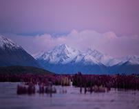 Lake Tekapo // New Zealand