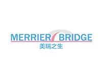 Merrier Bridge - corporate identity
