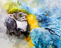 19 Artistic Watercolor & Sketch Photoshop Actions
