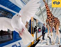 Nederlandse Spoorwegen - Dierendah