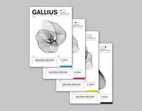 GALLIUS — Gig (CMYK)