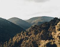 Black Mountains, 2017