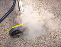Howdry steam cleaningsystem can help with cleaning