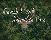 Free Cyrillic Brush Font One