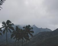 Kauai: A Hanalei Afternoon
