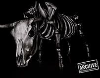Tramontina // Skeletons