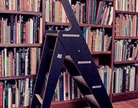 Ali Ladder