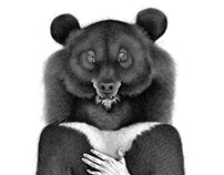 Moon Bear, Or How To Embrace Your Emotional Self