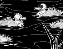 The poor ducks