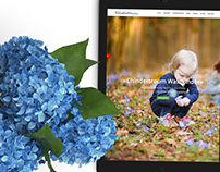 Webdesign: Chindertroum.ch