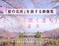 """Best cherry blossom city in Tokyo"" Video"