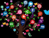 Use of Social Media for Lead Conversion - Tony Semadeni