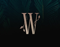 Wisteria - Display Font
