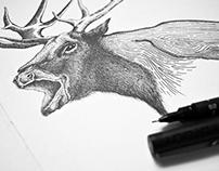 DotWork / Stippling - Sketchbook I
