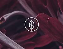 Flor de Patio