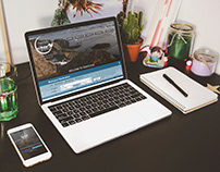 WEB/UI DESIGN