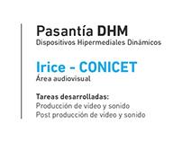 Irice CONICET